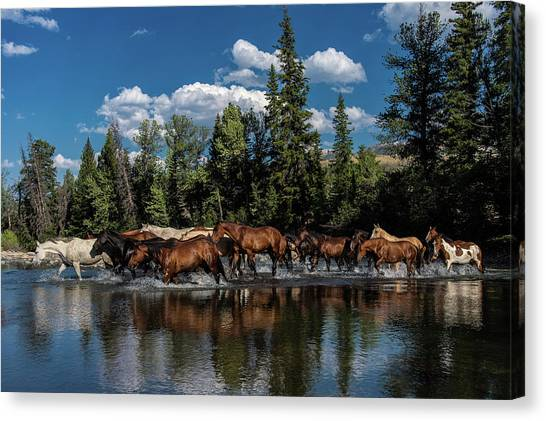 Crossing Over Canvas Print