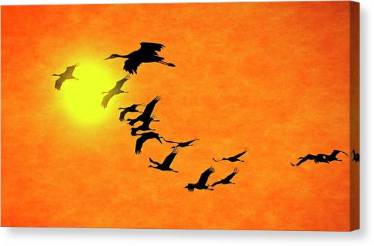 Crossing The Sun, Sandhill Cranes Canvas Print