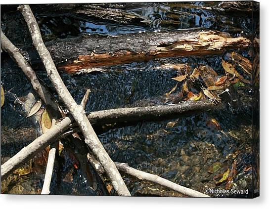 Crossing Waters Canvas Print by Nicholas Seward