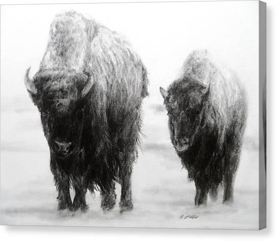 Crossing Yellowstone Canvas Print