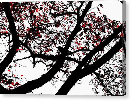 Crow And Tree In Black White And Red Canvas Print