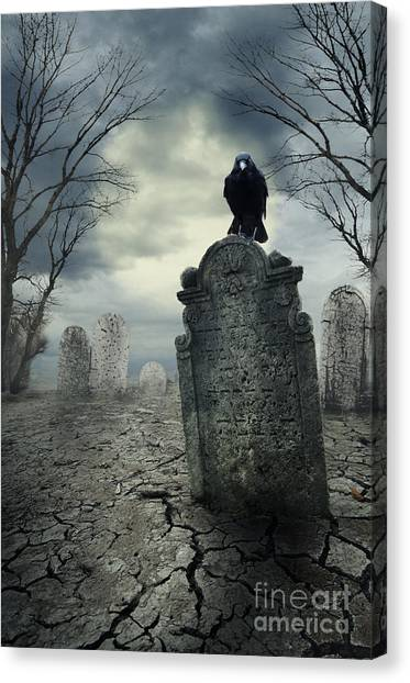 Crow On The Tombstone Canvas Print