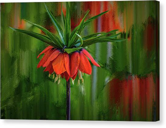 Canvas Print featuring the photograph Crown-imperial Abstract #h5 by Leif Sohlman