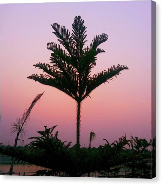 Crown In Pink Sky Canvas Print