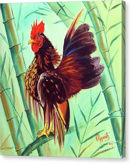 Crown Of The Serama Chicken Canvas Print