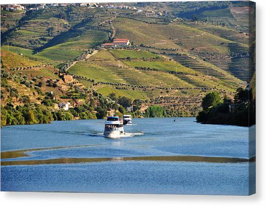 Cruising Douro River Valley Canvas Print by Jacqueline M Lewis