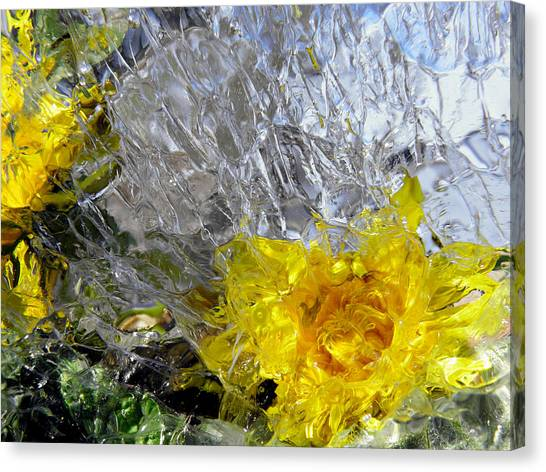 Crystal Flowers Canvas Print