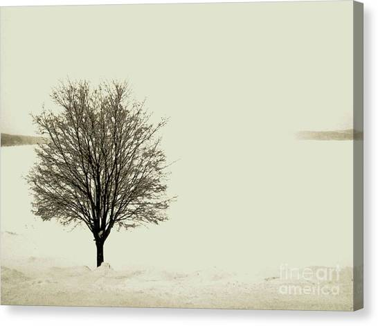 Crystal Lake In Winter Canvas Print