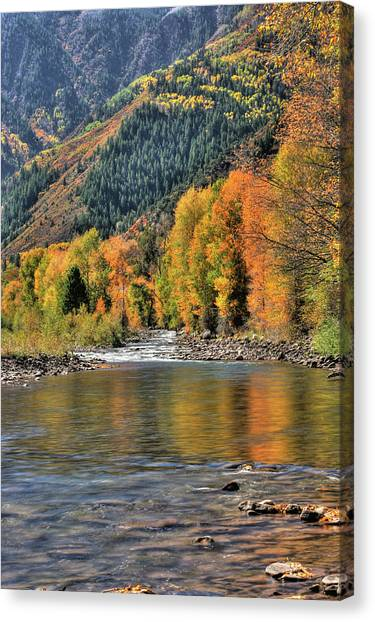 Crystal River Fall Color Canvas Print