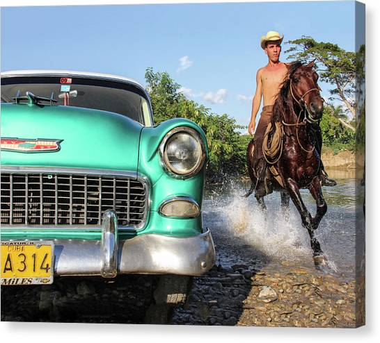Cuban Horsepower Canvas Print