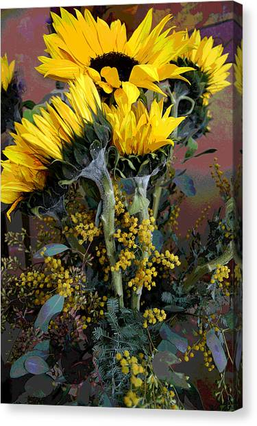 Cuddling Sunflowers Canvas Print