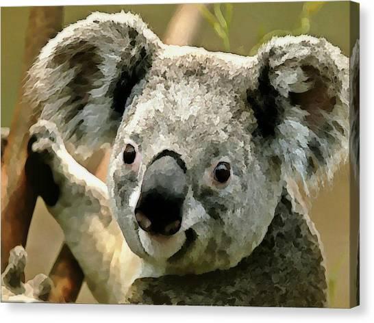Canvas Print - Cuddly Koala by Raven Hannah