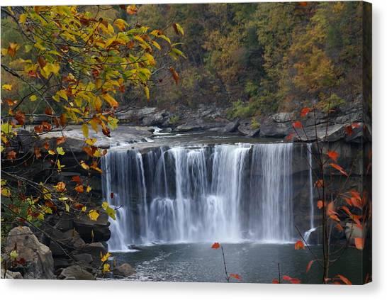 Cumberland Falls In Gold Canvas Print