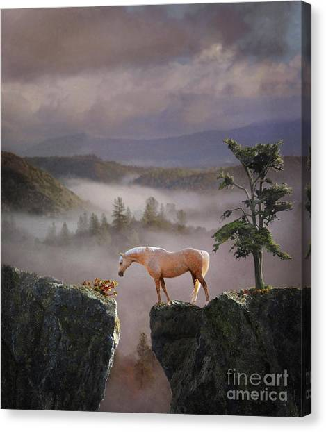 Canvas Print featuring the photograph Curiosity by Melinda Hughes-Berland
