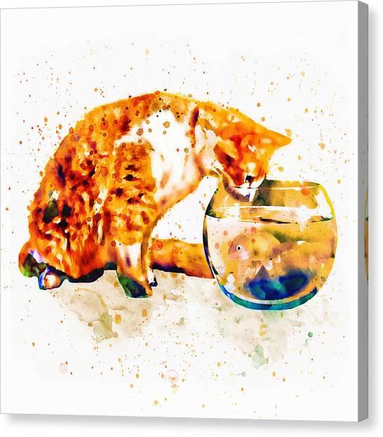 Fish Tanks Canvas Print - Curious Cat  by Marian Voicu