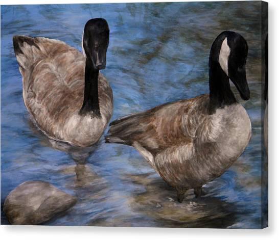Curious Geese Canvas Print