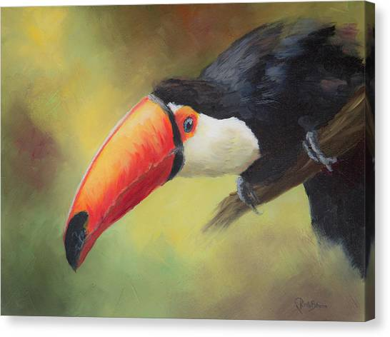 Toucans Canvas Print - Curious by Kirsty Rebecca