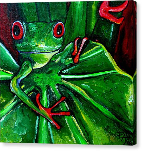 Curious Tree Frog Canvas Print by Patti Schermerhorn