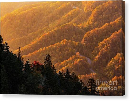 Smoky Mountain Roads Canvas Print