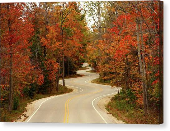 Roads Canvas Print - Curvy Fall by Adam Romanowicz