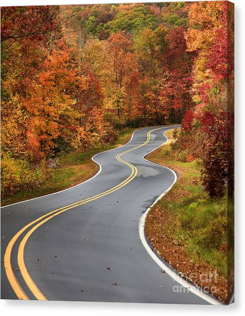 Curvy Road In The Mountains Canvas Print