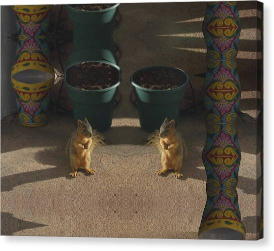 Cute Baby Squirrels On The Porch Canvas Print
