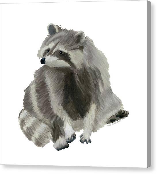 Cute Raccoon Canvas Print