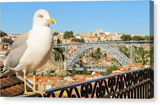 Cute Seagull And Porto's Cityscape Canvas Print