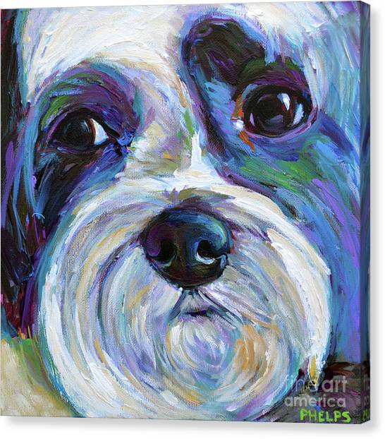 Shih Tzus Canvas Print - Cute Shih Tzu Face by Robert Phelps
