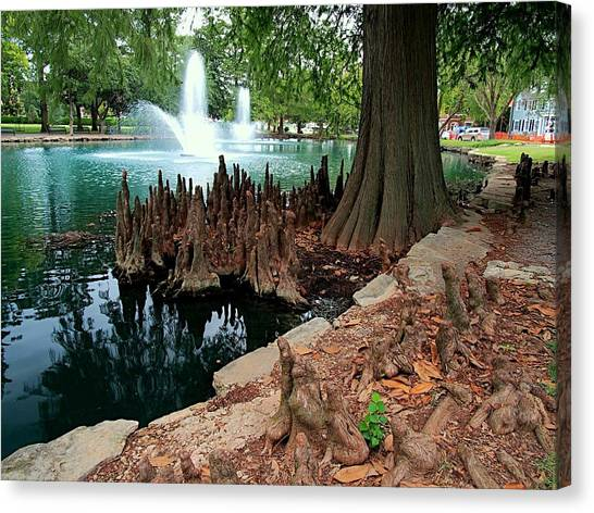 Oklahoma State University Canvas Print - Cypress And Fountain  by Buck Buchanan
