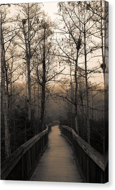Cypress Boardwalk Canvas Print