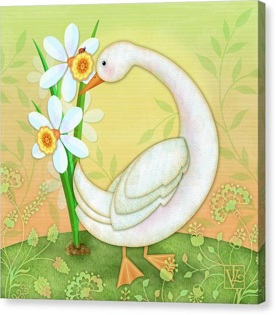 D Is For Duck And Daffodils Canvas Print