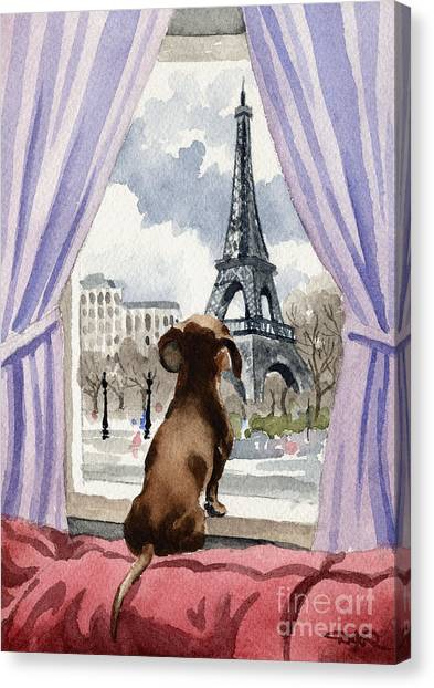 Watercolor Pet Portraits Canvas Print - Dachshund In Paris by David Rogers