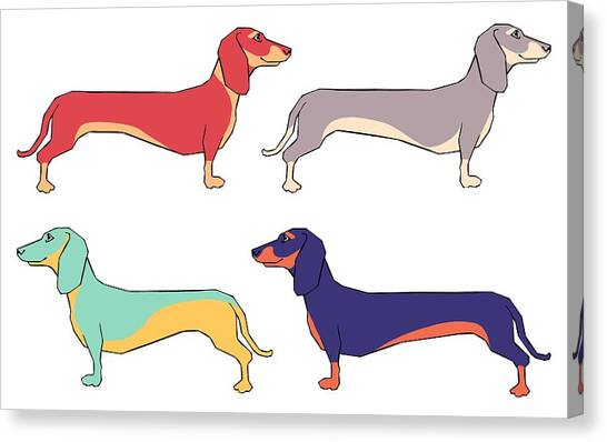 Dachshunds Canvas Print - Dachshunds by Kelly Jade King