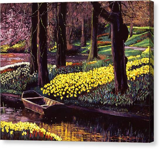 Daffodils Canvas Print - Daffodil Park by David Lloyd Glover