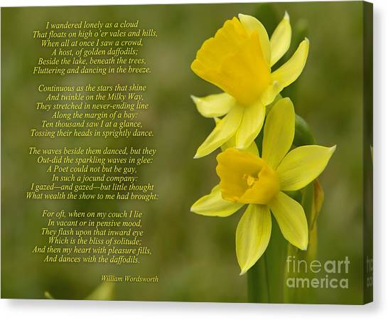 Daffodils Poem By William Wordsworth Canvas Print