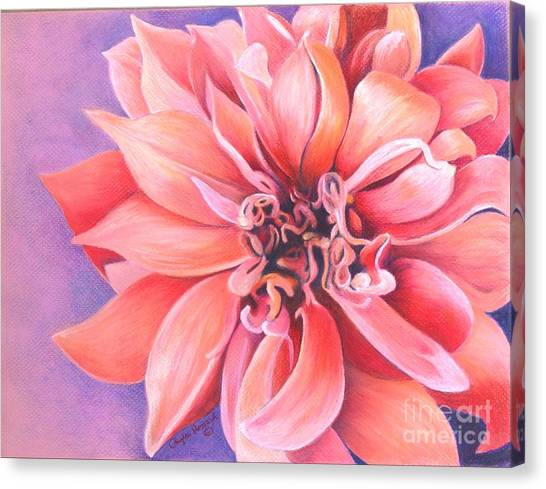 Canvas Print featuring the drawing Dahlia 2 by Phyllis Howard