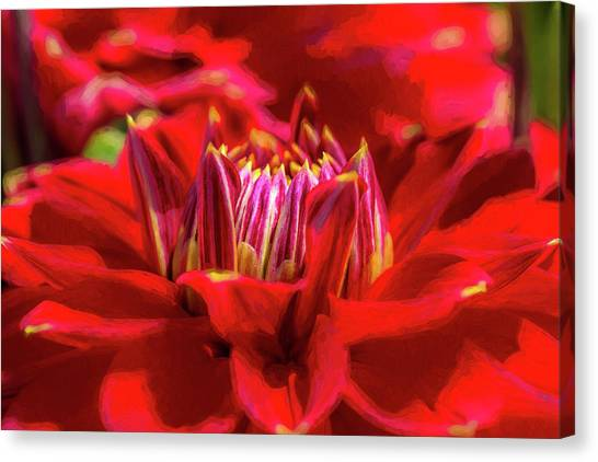 Dahlia Study 1 Painterly Canvas Print