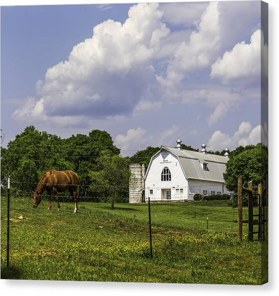 Dairy Barn Panorama 03 Canvas Print