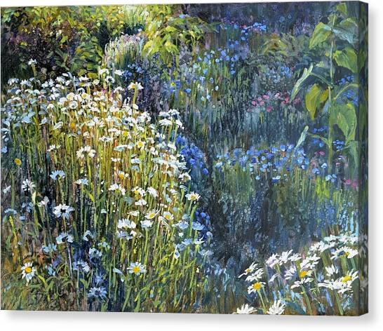 Daisies And Shades Of Blue Canvas Print