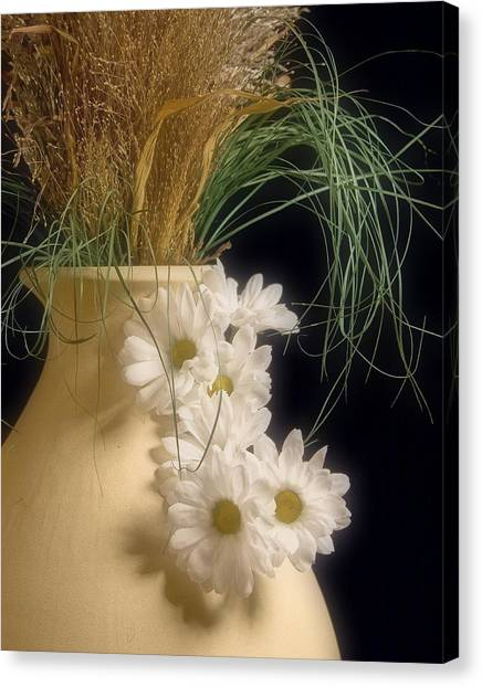 Daisy Canvas Print - Daisies On The Side by Tom Mc Nemar