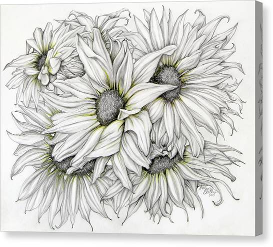 Sunflowers Pencil Canvas Print