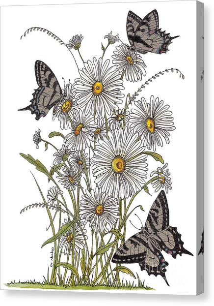 Daisy At Your Feet Canvas Print