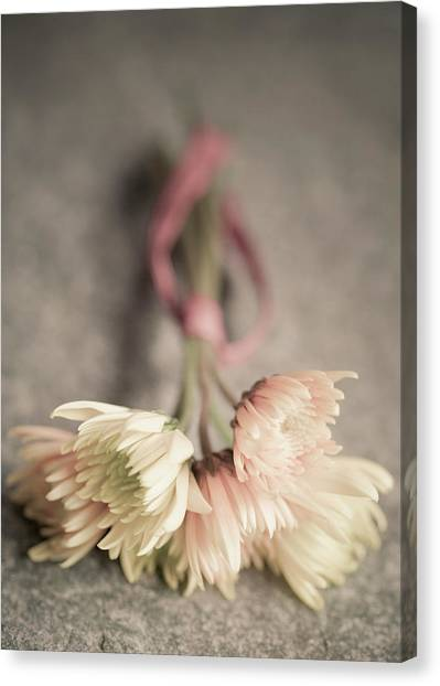 Canvas Print - Daisy Bouquet by Richard Nixon