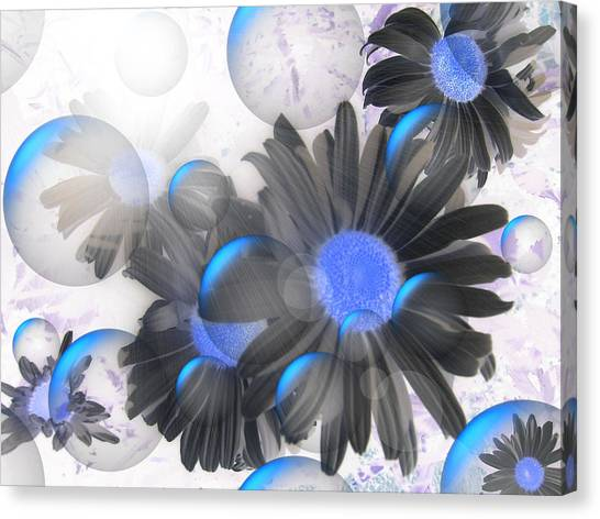 Daisy Bubbles Canvas Print