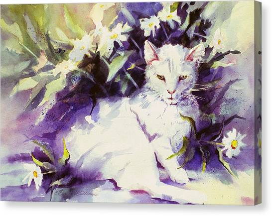 Daisy Cat Canvas Print