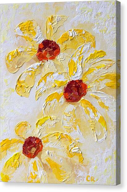 Daisy Trio Canvas Print