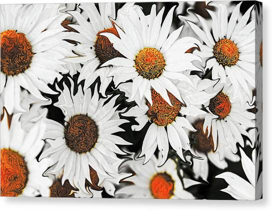 Daisy With A Twist Canvas Print
