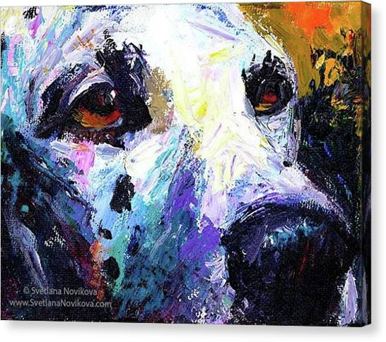 Animals Canvas Print - Dalmatian Dog Close-up Painting By by Svetlana Novikova