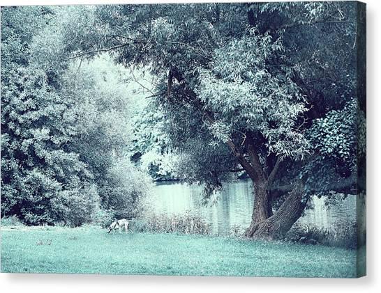 Jenny Lake Canvas Print - Dalmatian In Blue Woods by Jenny Rainbow